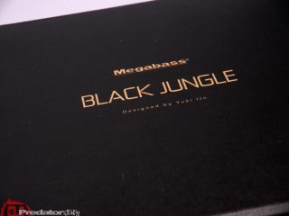 Unboxing Megabass Lin 10 Black Jungle