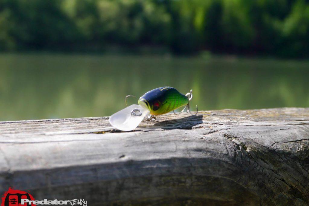 predator.fishing ★ – Findet die wichtigsten Tips und ...