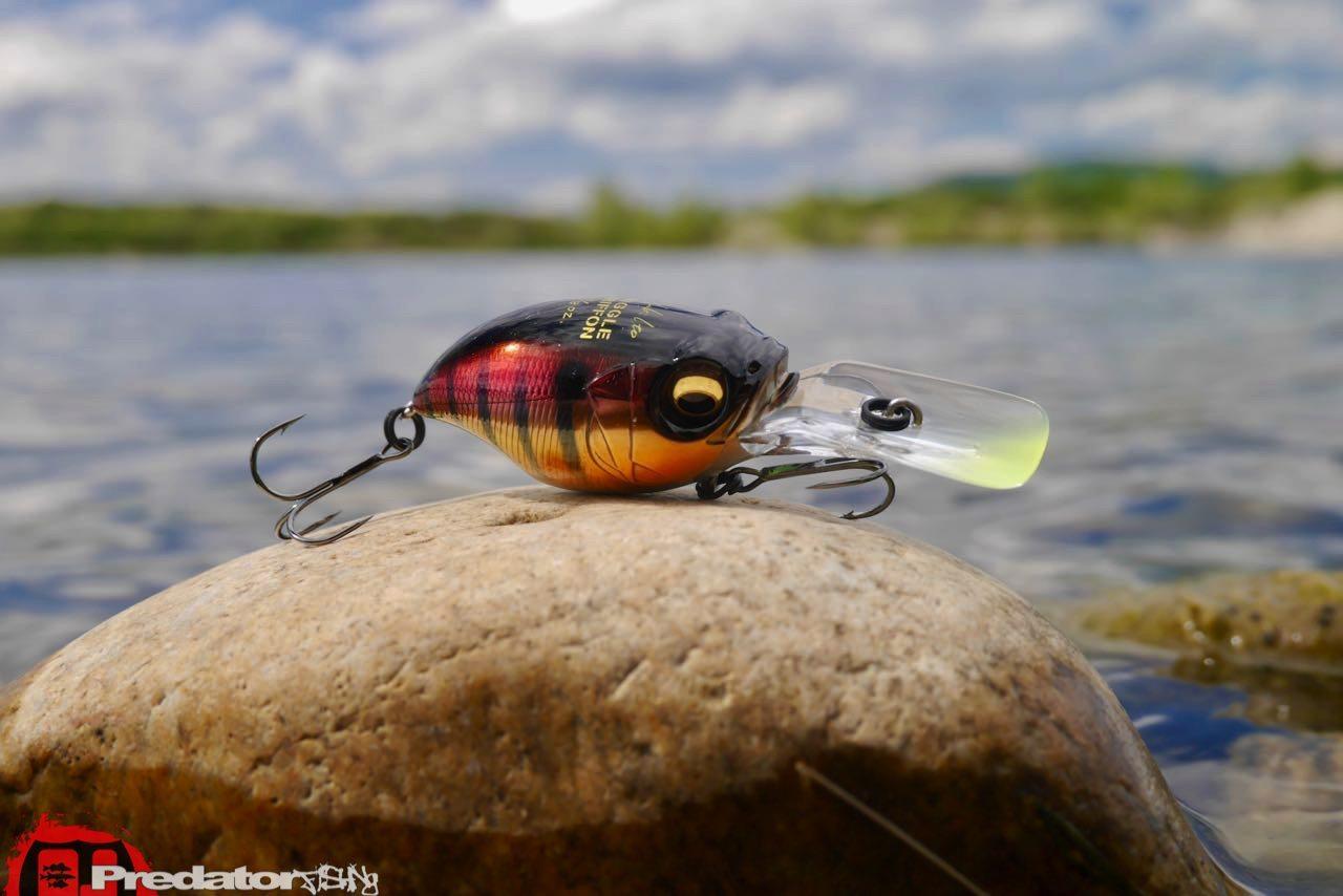 Megabass WIGGLE GRIFFON Crankbait predatorfishing