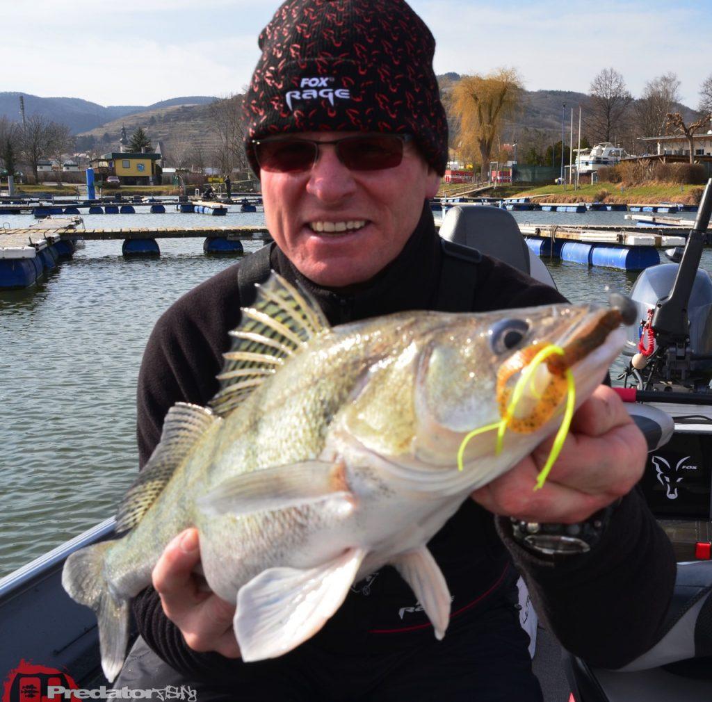 Saison 2015, die wird spannend auf Zander und Barsch an der Donau